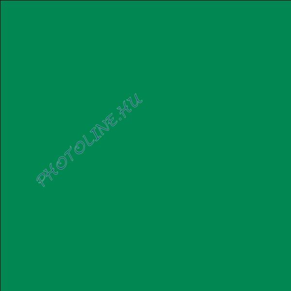 Barkácsfilc 40x50 cm, 3 mm vastag, sötétzöld