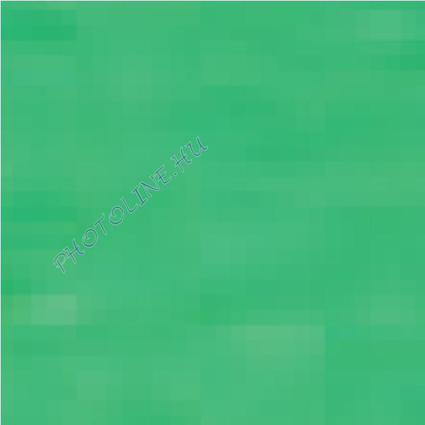 Barkácsfilc 40x50 cm, 3 mm vastag, fűzöld