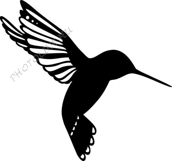 Sablon, kolibri madárka 15*15 cm