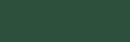 Krémes akrilfesték selyemfényű 60 ml fűzöld